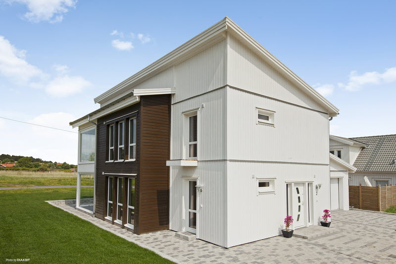 modern withe wooden house cool  (7)