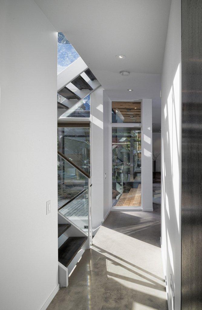 modern wood glass townhouse (3)