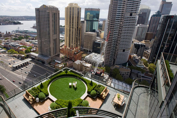 rooftop garden green in sydney australia (4)