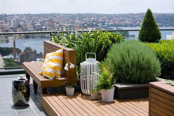 rooftop garden green in sydney australia (6)
