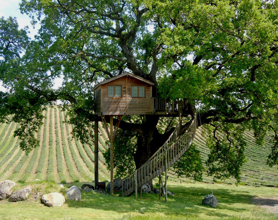 small treehouse wooden cottage (2)