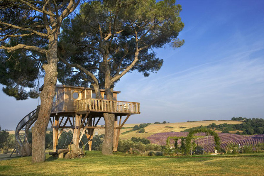 small treehouse wooden cottage (9)