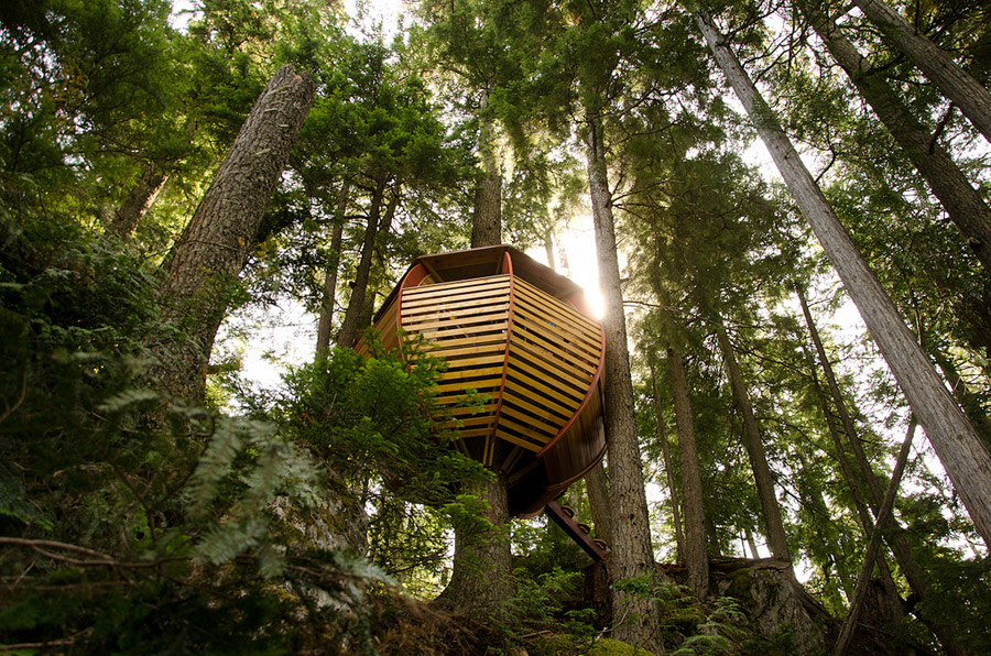 small wood treehouse canada (1)