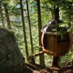 แบบบ้านต้นไม้ทรงแปดเหลี่ยม ออกแบบดูโมเดิร์น หลังเล็กๆน่ารัก
