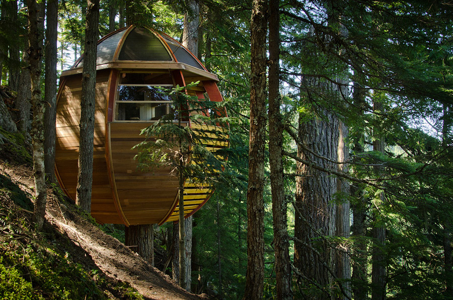 small wood treehouse canada (4)