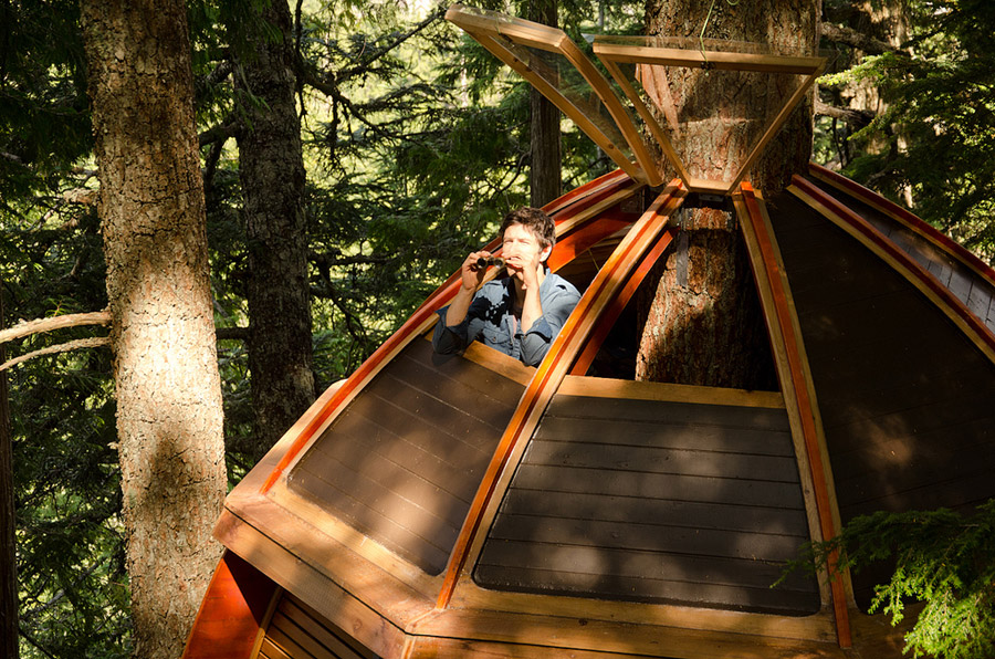 small wood treehouse canada (5)