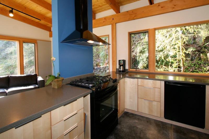 wood modern house (2)