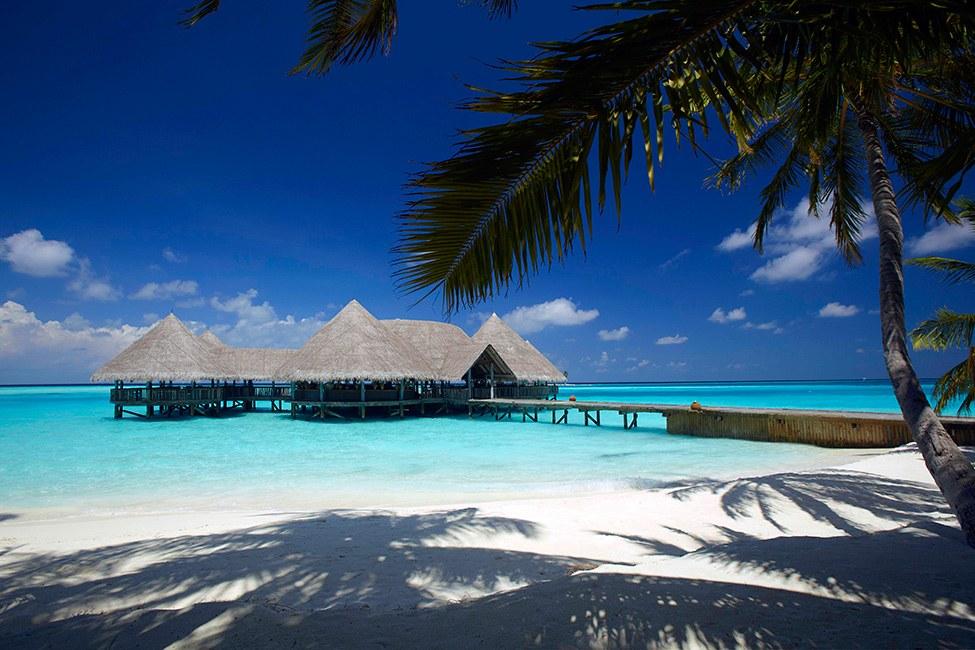 Gili Lankanfush resort maldives (8)