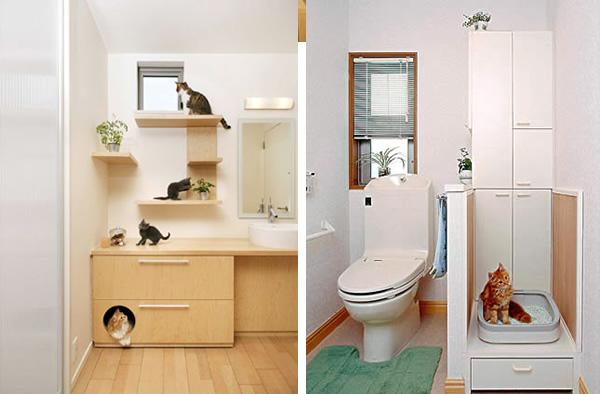 best house idea for cat kitten (5)
