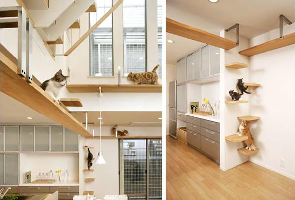 best house idea for cat kitten (9)