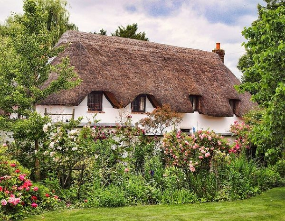 europe cottage house garden (3)