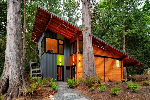 modern eco friendly house in natural forest (4)