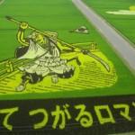 ไอเดียชาวนาญี่ปุ่นทำ ศิลปะบนทุ่งนา เอาไปใช้เป็นไอเดียตกแต่งสนามหญ้าได้เลย