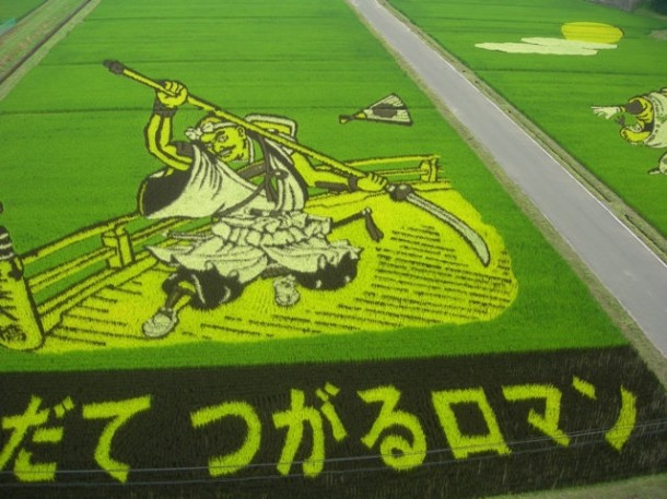 japan art rice field farm (2)