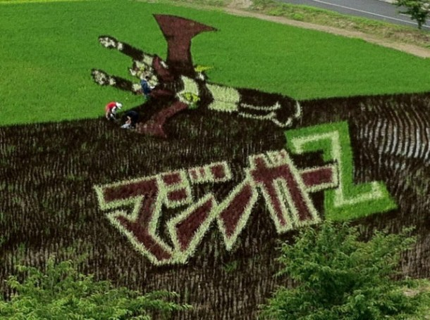 japan art rice field farm (4)