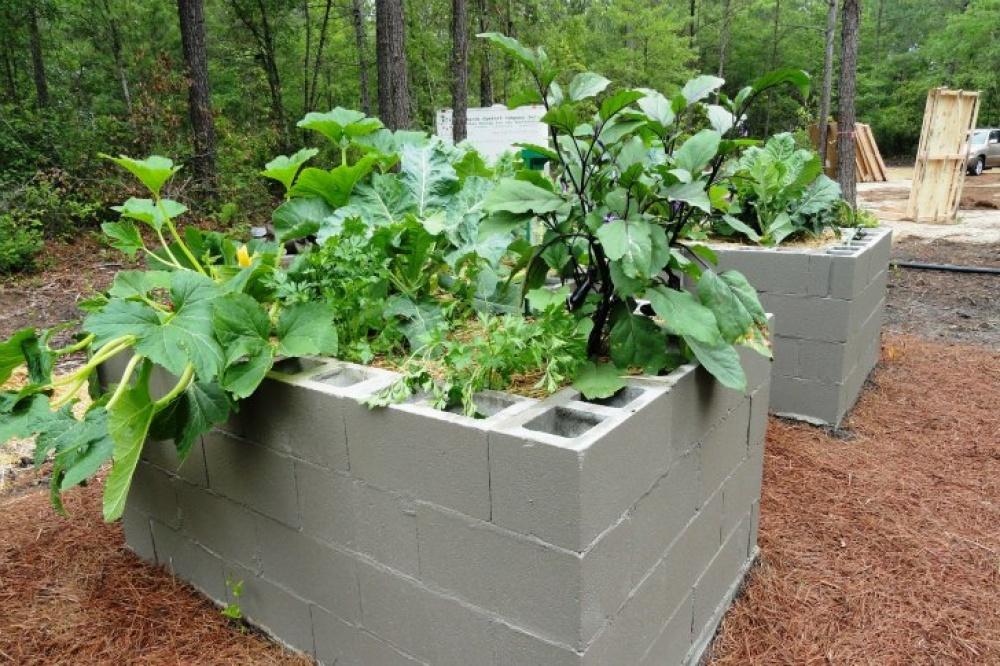 modern future house solar energy flood prevention smart (5)
