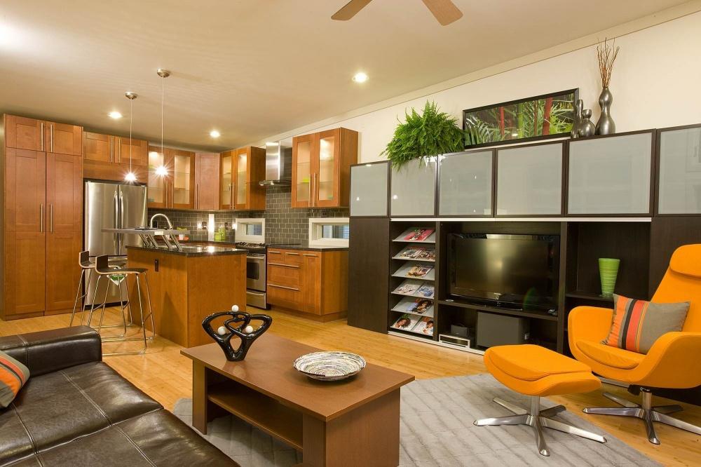 modern mini house environment suitable living (5)