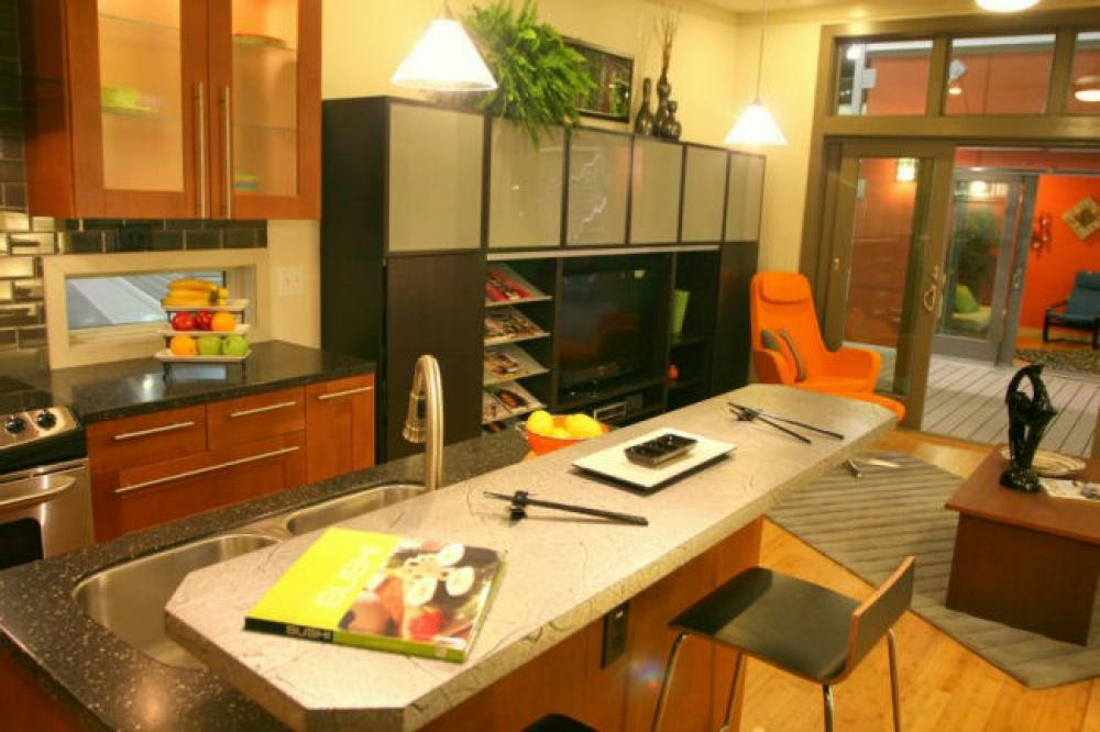 modern mini house environment suitable living (7)