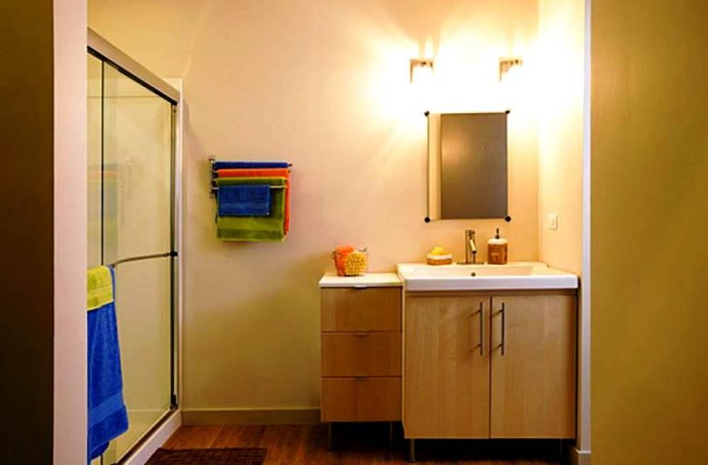 modern mini house environment suitable living (8)