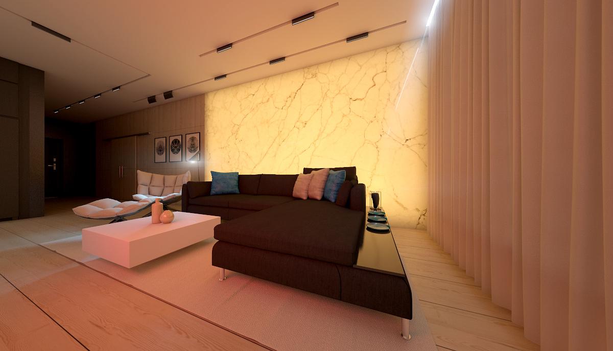 modern elegant condominium room city life (7)