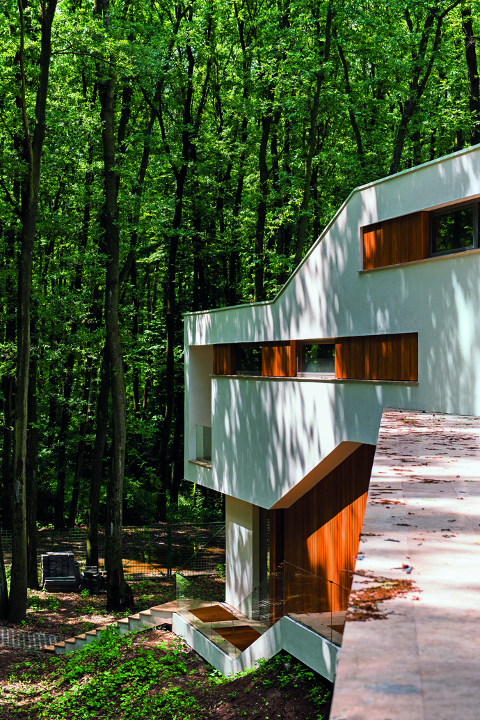 modern retro house in romania forest (1)