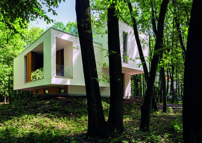 modern retro house in romania forest (8)