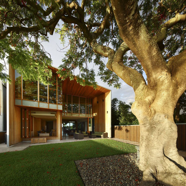 modern wooden house with yard in city (11)