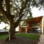 แบบบ้านโมเดิร์นของคนรักธรรมชาติ ใช้ไม้เป็นวัสดุหลักดูสวยงามและหรูหรา
