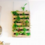 DIY สร้างไม้ประดับเก๋ๆ แสนง่ายด้วยพาเลทไม้ เพิ่มความเป็นธรรมชาติให้กับบ้าน