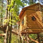 แบบบ้านต้นไม้ รูปทรงกระท่อมคลาสสิค ดูเล็กน่ารักแต่รองรับการใช้งานครบครัน