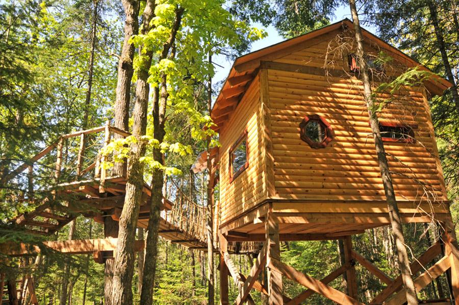 classic treehouse cute (5)