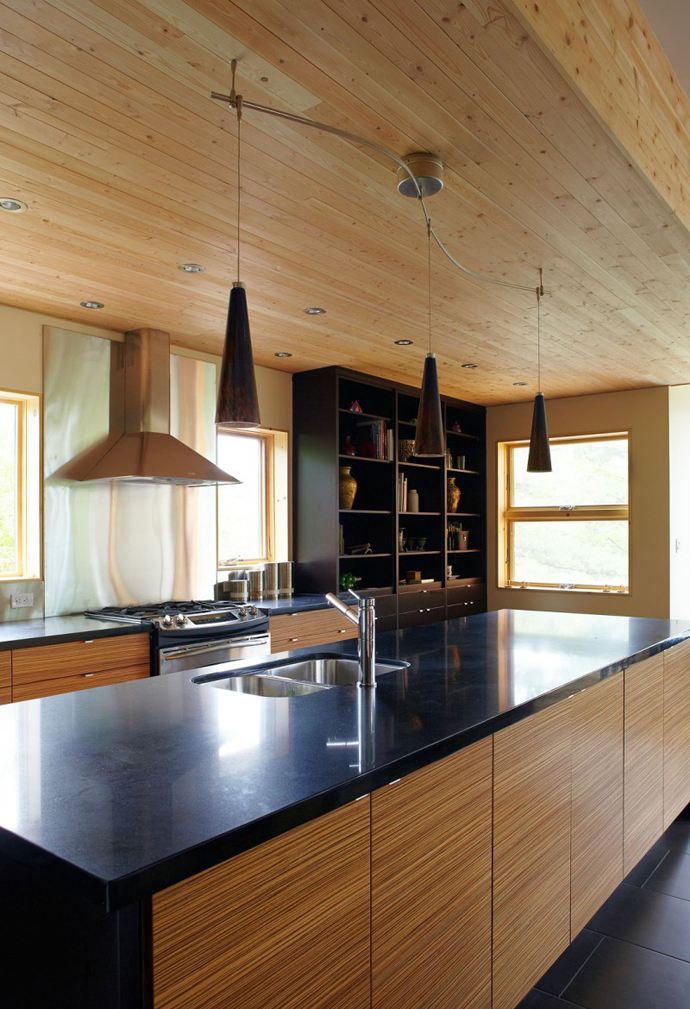 contemporary home (3)