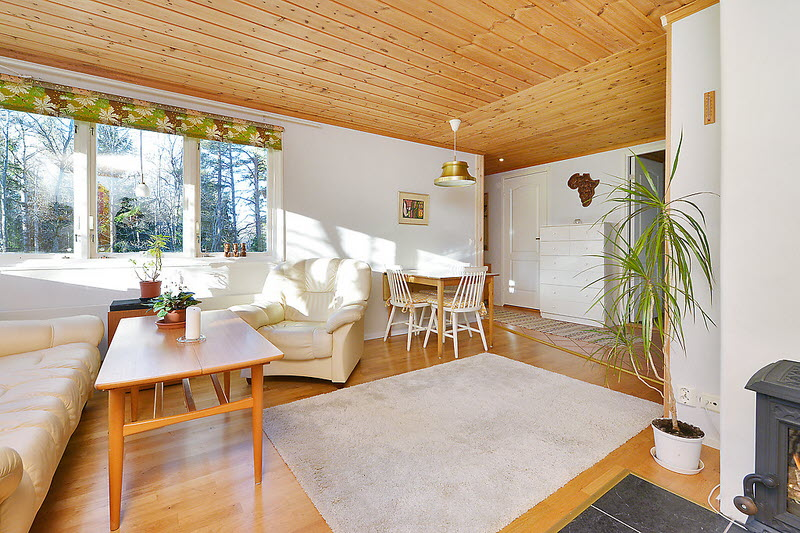 cottage house for small family or single (5)