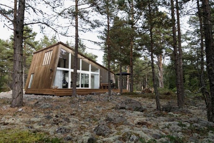 modern small wooden house in wood (2)