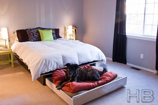 trundle-dog-bed