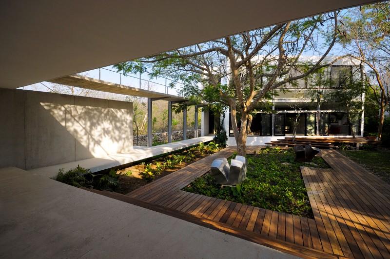 casa-arboles-01-800x531