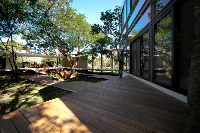 casa-arboles-02-800x531