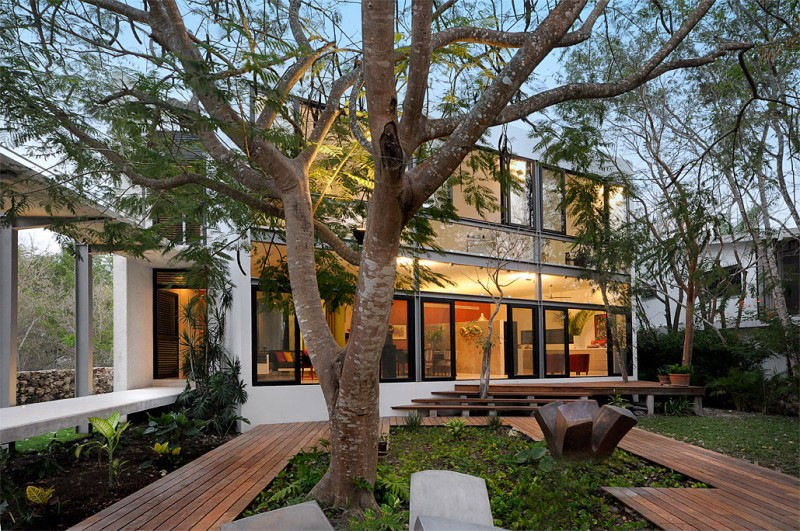 casa-arboles-08-800x531