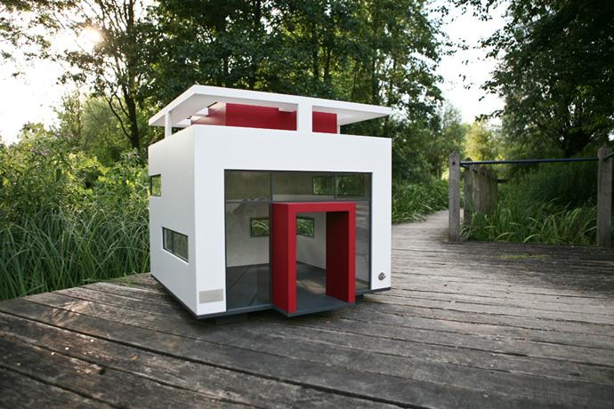 dog-house-4