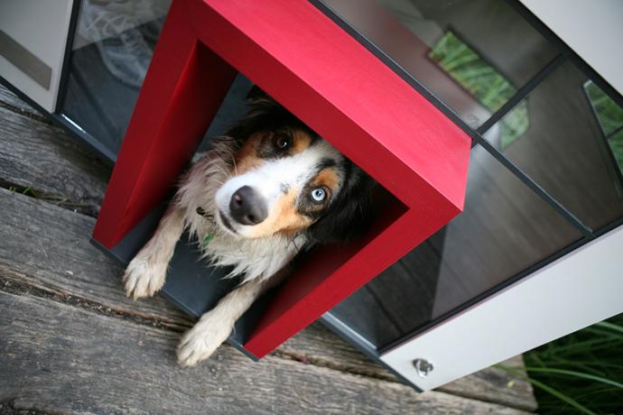 dog-house-6