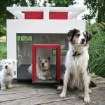 The Cubix ไอเดียบ้านสุนัขน่ารัก ออกแบบแนวโมเดิร์น ดูสวยงามไม่แพ้บ้านคน