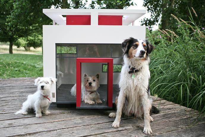 dog-house-8