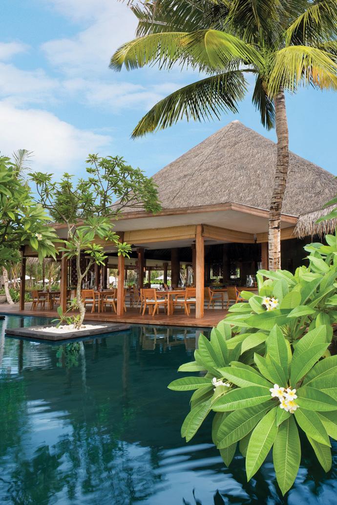 maldivbes beach villa resort (20)