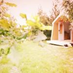 บ้านกระท่อมหลังเล็กกลางป่า ออกแบบรูปทรงสามเหลี่ยม ตกแต่งอย่างเรียบง่าย