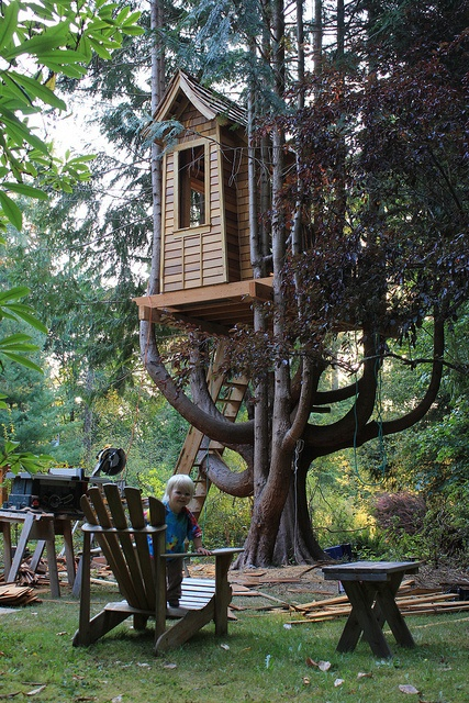 treehouse (3)