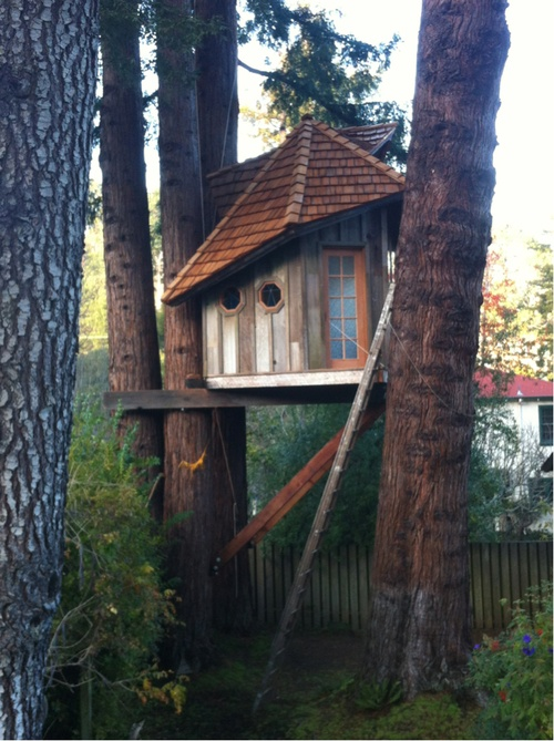 treehouse (4)