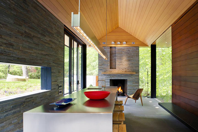 mini modern cottage house in forest usa (9)