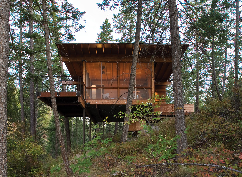 modern cabin in the wood (1)