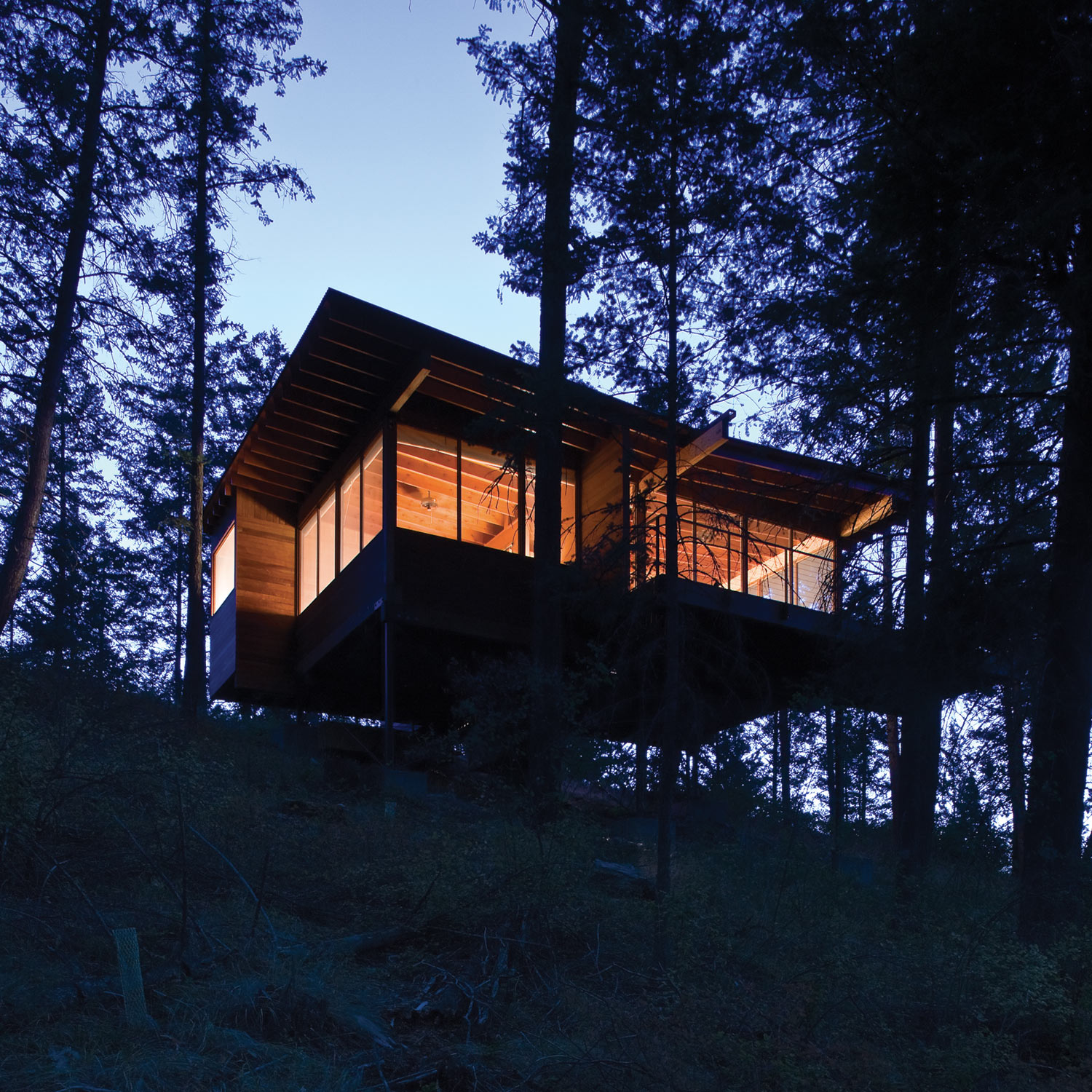 modern cabin in the wood (3)