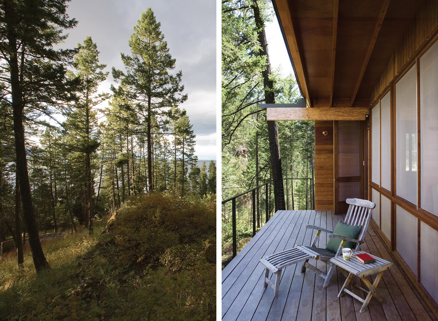 modern cabin in the wood (4)